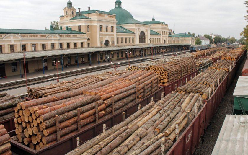 Як зручно та вигідно придбати деревину - Kiev Tours