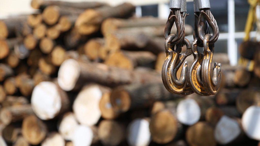 Сектор прозорих торгів деревиною